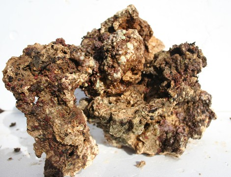 Caribbean Live Rock is light weight - cool looking, inexpensive rock. Excellent for the Budget Aquarium