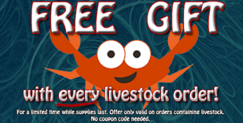 Great Deals on Saltwater Fish, Aquarium Chillers, RO/DI Systems, Live Rock, and so much more!