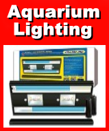 We carry a full line of Aquarium Lighting
