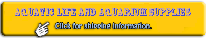 Saltwater Fish Shipping on orders over $350.00