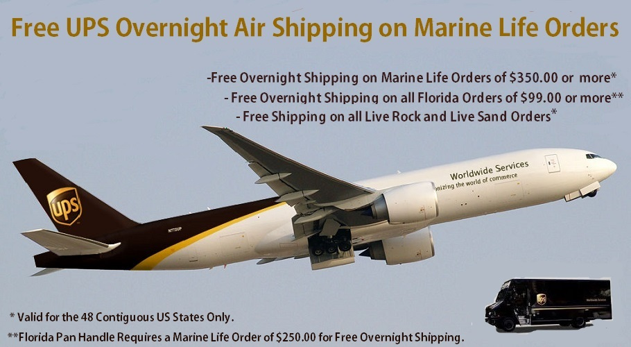 Saltwater Fish Free UPS Air Shipping on orders over $350.00
